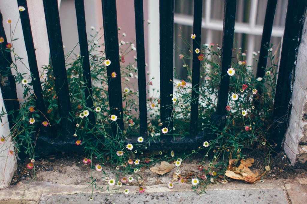 magic-street-photography
