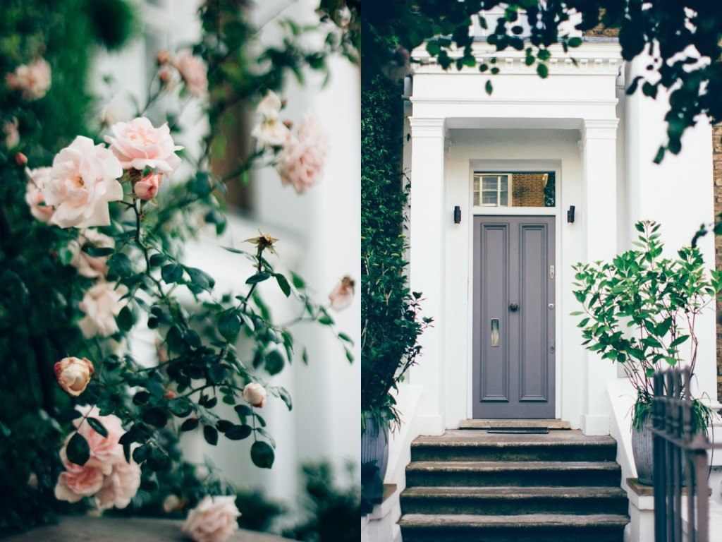 white-roses-beatiful-doors